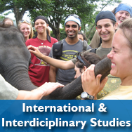 International & Interdisciplinary Studies